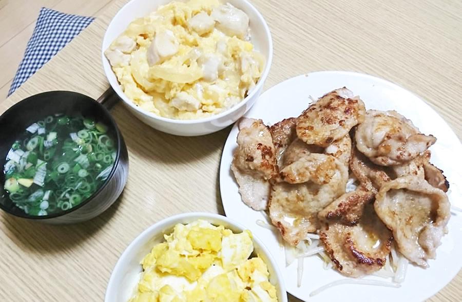 下味冷凍(親子丼、生姜焼き)